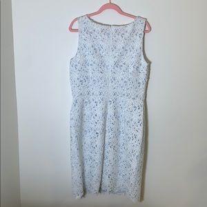 LOFT Lace Dress NWT
